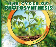 The cycle of photosynthesis /  by Arnold Ringstad. - by Arnold Ringstad.