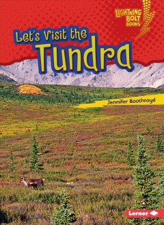 Let's visit the tundra /  Jennifer Boothroyd.