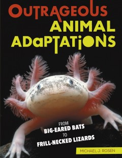 Outrageous animal adaptations : from big-eared bats to frill-necked lizards / Michael J. Rosen.