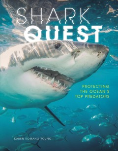 Shark quest : protecting the ocean's top predators / Karen Romano Young. - Karen Romano Young.