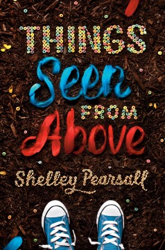 Things Seen from Above /  Shelley Pearsall ; illustrated by Xingye Jin.