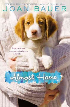 Almost home /  Joan Bauer. - Joan Bauer.