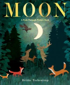 Moon : a peek-through picture book / illustrated by Britta Teckentrup. - illustrated by Britta Teckentrup.