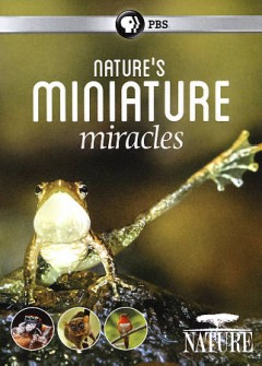 Nature's miniature miracles /  producer, Lucy Smith. - producer, Lucy Smith.