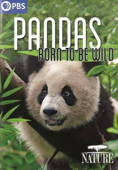 Pandas : born to be wild / produced by Jacky Poon, Yuanqi Wu ; written by Mark Fletcher ; a co-production of Terra Mater Factual Studios and Mark Fletcher Productions in association with Thirteen Productions LLC for WNET.