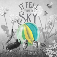 It fell from the sky /  the Fan Brothers. - the Fan Brothers.