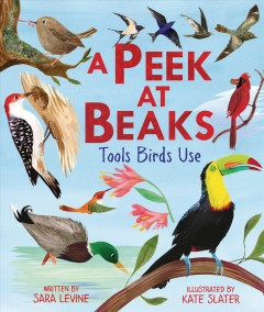 A peek at beaks : tools birds use / written by Sara Levine ; illustrated by Kate Slater. - written by Sara Levine ; illustrated by Kate Slater.