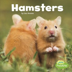 Hamsters /  by Lisa Amstutz. - by Lisa Amstutz.