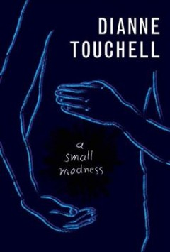 A small madness /  Dianne Touchell. - Dianne Touchell.