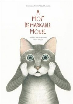 A most mysterious mouse /  Giovanna Zoboli ; illustrations by Lisa D'Andrea ; translated from the Italian by Antony Shugaar.