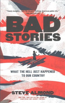 Bad stories : what the hell just happened to our country / Steve Almond.