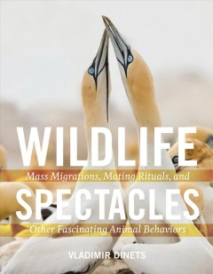 Wildlife spectacles : mass migrations, mating rituals, and other fascinating animal behaviors / Vladimir Dinets.