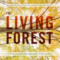 The living forest : an eye-opening journey from the canopy to the woodland floor / photography by Robert Llewellyn ; written by Joan Maloof. - photography by Robert Llewellyn ; written by Joan Maloof.