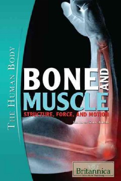Bone and Muscle : Structure, Force, and Motion.