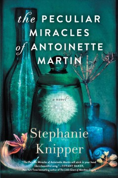 The peculiar miracles of Antoinette Martin : a novel / Stephanie Knipper.