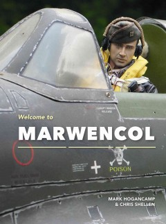 Welcome to Marwencol /  Mark Hogancamp & Chis Shellen.
