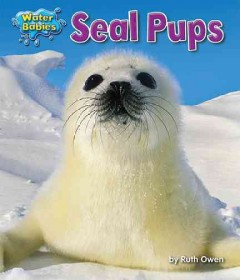 Seal pups /  by Ruth Owen.