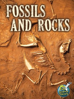 Fossils and rocks /  by Kimberly M. Hutmacher.