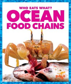 Ocean food chains /  by Rebecca Pettiford. - by Rebecca Pettiford.