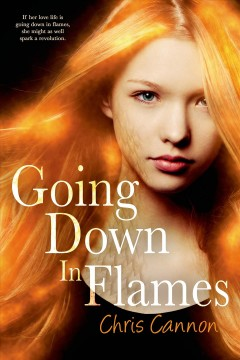 Going down in flames /  Chris Cannon.