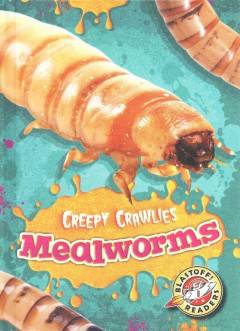 Mealworms /  by Kari Schuetz. - by Kari Schuetz.