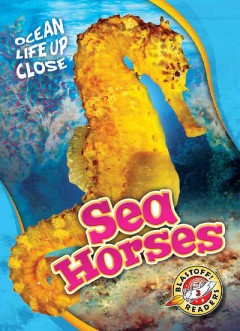 Sea horses /  by Christina Leaf. - by Christina Leaf.