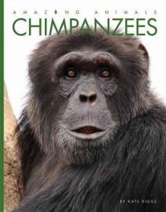 Chimpanzees /  by Kate Riggs. - by Kate Riggs.
