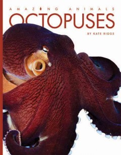 Octopuses /  by Kate Riggs. - by Kate Riggs.