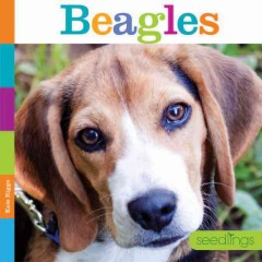 Beagles /  Kate Riggs. - Kate Riggs.
