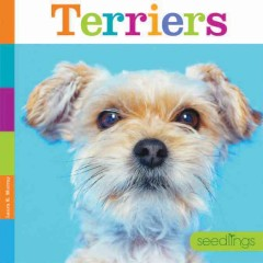 Terriers /  Laura K. Murray. - Laura K. Murray.