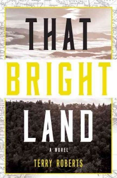 That bright land : a novel / Terry Roberts.