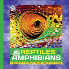 Reptiles & amphibians : a close-up photographic look inside your world / written by Heidi Fiedler.