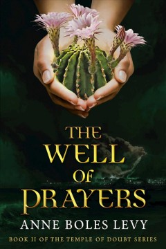The well of prayers /  Anne Boles Levy.