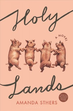 Holy lands : a novel / Amanda Sthers.