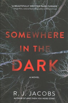Somewhere in the dark : a novel / R. J. Jacobs.