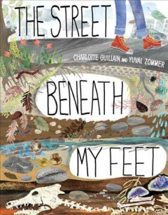 The street beneath my feet /  Charlotte Guillain and Yuval Zommer.