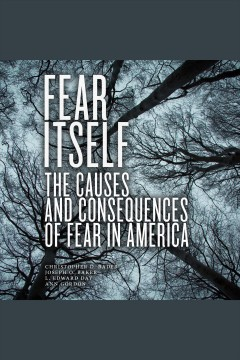 Fear itself : the causes and consequences of fear in America / Christopher D. Bader, Joseph O. Baker, L. Edward Day, Ann Gordon.
