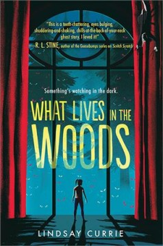 What lives in the woods /  Lindsay Currie.