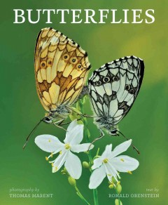 Butterflies /  Thomas Marent, photographer ; Ronald Orenstein, author of text.