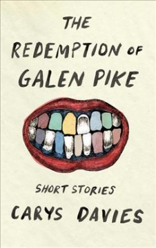 The redemption of Galen Pike /  Carys Davies.