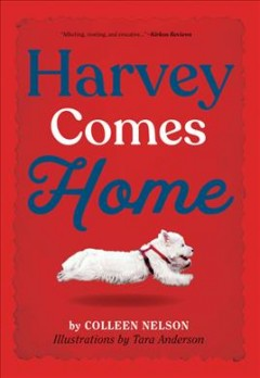 Harvey comes home /  by Colleen Nelson ; illustrations by Tara Anderson.