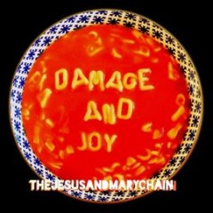Damage and Joy /  Jesus and Mary Chain.