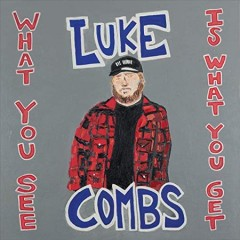 What you see is what you get / Luke Combs - Luke Combs