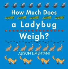 How much does a ladybug weigh? /  Alison Limentani.
