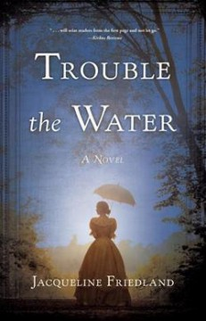 Trouble the water : a novel /  Jacqueline Friedland.
