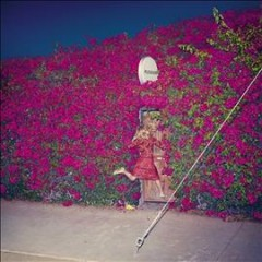 Pleasure /  Feist. - Feist.