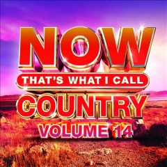 NOW that's what I call country : volume 14.