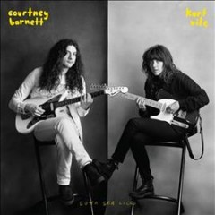 Lotta sea lice /  Courtney Barnett and Kurt Vile.