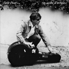 The unseen in between /  Steve Gunn. - Steve Gunn.