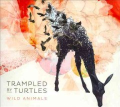 Wild animals /  Trampled by Turtles.